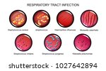 vector illustration of... | Shutterstock .eps vector #1027642894