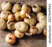 Raw Whole Organic Potatoes Wit...