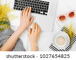 young woman freelancer working... | Shutterstock . vector #1027654825