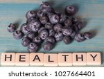 blueberry fruits with text word ... | Shutterstock . vector #1027664401