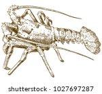 vector antique engraving... | Shutterstock .eps vector #1027697287