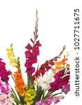Beautiful Bouquet Of...