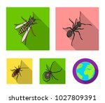 an insect arthropod  an osa  a...   Shutterstock .eps vector #1027809391