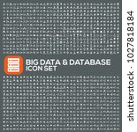 big data and database icon set... | Shutterstock .eps vector #1027818184