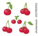 cherry  vector illustration | Shutterstock .eps vector #1027855951