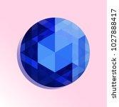 vector illustration of sapphire ... | Shutterstock .eps vector #1027888417