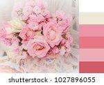 color palette of bridal bouquet ... | Shutterstock . vector #1027896055