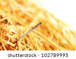 needle in a haystack.   Shutterstock . vector #102789995