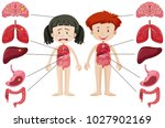 girl and boy with different... | Shutterstock .eps vector #1027902169