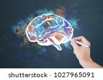 hand drawing colorful brain... | Shutterstock . vector #1027965091
