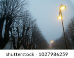 street lights in foggy weather  ... | Shutterstock . vector #1027986259