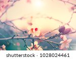 spring nature background with...   Shutterstock . vector #1028024461