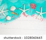 seashells  sea stones  sea... | Shutterstock . vector #1028060665