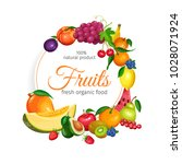 fruits banner. vector design... | Shutterstock .eps vector #1028071924