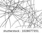 wavy  billowy  flowing lines... | Shutterstock .eps vector #1028077351