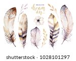 hand drawn watercolor paintings ... | Shutterstock . vector #1028101297