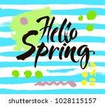 phrase hello spring brush... | Shutterstock .eps vector #1028115157