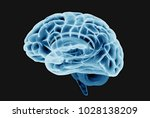 3d xray or scan brain... | Shutterstock . vector #1028138209