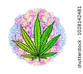 cannabis leaf  marijuana  herb  ...   Shutterstock .eps vector #1028142481