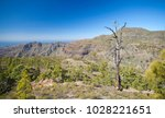 west of gran canaria  february... | Shutterstock . vector #1028221651