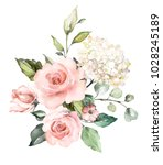 watercolor flowers. floral... | Shutterstock . vector #1028245189