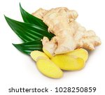 ginger with leaves isolated on... | Shutterstock . vector #1028250859