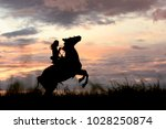 way to the top  leader and... | Shutterstock . vector #1028250874