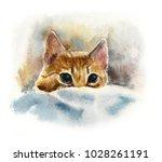 red domestic cat. watercolor... | Shutterstock . vector #1028261191
