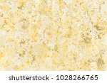 gold wet abstract paint leaks...   Shutterstock . vector #1028266765