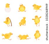 set of funny yellow chicken in... | Shutterstock .eps vector #1028268949