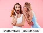 portrait of a two cute girls... | Shutterstock . vector #1028354839