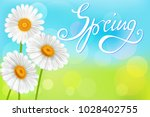 chamomiles on abstract spring... | Shutterstock .eps vector #1028402755