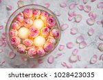 beautiful pink roses and... | Shutterstock . vector #1028423035