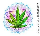 cannabis leaf  marijuana  herb  ...   Shutterstock .eps vector #1028423125