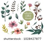 watercolor floral elements for... | Shutterstock . vector #1028427877