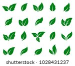 set of isolated green leaves... | Shutterstock .eps vector #1028431237