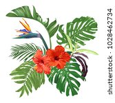 strelitzia  hibiscus and... | Shutterstock .eps vector #1028462734
