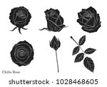 rose vector set by hand drawing   Shutterstock .eps vector #1028468605