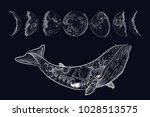 whale surreal tattoo. steering... | Shutterstock .eps vector #1028513575