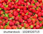 Fresh Ripe Strawberry Red...