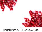 ripe red currants on white... | Shutterstock . vector #1028562235