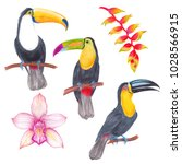 watercolor marker tropical... | Shutterstock . vector #1028566915