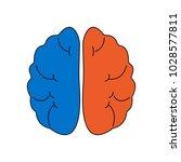 vector flat color line brain... | Shutterstock .eps vector #1028577811
