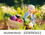 cute little boy holding a bunch ... | Shutterstock . vector #1028582611