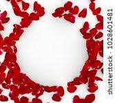 Stock photo red rose petals scattered on the floor in the center an empty space for your design isolated 1028601481