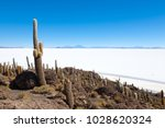 salar de uyuni view from... | Shutterstock . vector #1028620324