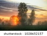 spring morning. a misty dawn in ... | Shutterstock . vector #1028652157