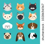 dogs and cats pets friendly | Shutterstock .eps vector #1028656567
