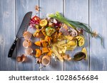 organic leftovers  kitchem...   Shutterstock . vector #1028656684