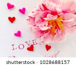 fresh camellia with love words... | Shutterstock . vector #1028688157